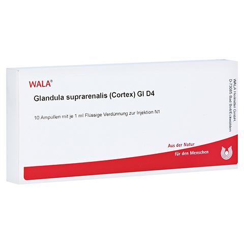GLANDULA SUPRARENALIS cortex GL D 4 Ampullen 10x1 Milliliter N1