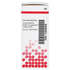 NUX VOMICA D 6 DHU Glob.bei Erkr.d.Verdauungsorg. 10 Gramm N1 - Rechte Seite
