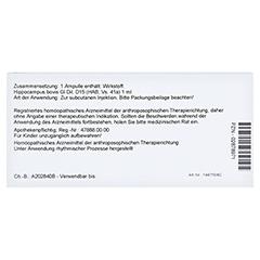 HIPPOCAMPUS GL D 15 Ampullen 10x1 Milliliter N1 - Rückseite