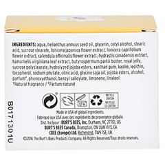 BURT'S BEES Skin Nourishment Night Cream 141 Gramm - Rückseite