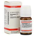 HAPLOPAPPUS D 12 Tabletten 80 Stück N1