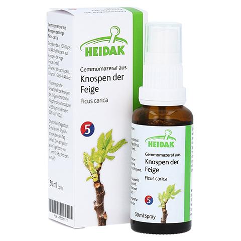 GEMMOMAZERAT Ficus carica Spray 30 Milliliter