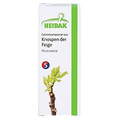 GEMMOMAZERAT Ficus carica Spray 30 Milliliter - Vorderseite