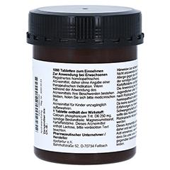 SCHÜSSLER Nr.2 Calcium phosphoricum D 6 Tabletten 1000 Stück - Linke Seite