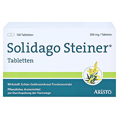 Solidago Steiner 100 Stück - Vorderseite
