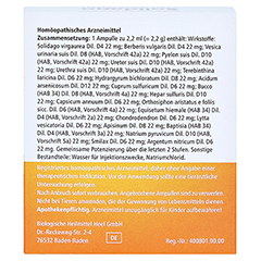 SOLIDAGO COMPOSITUM ad us.vet.Ampullen 10 Stück - Rückseite
