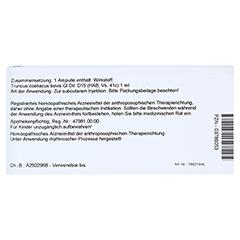 TRUNCUS coeliacus GL D 15 Ampullen 10x1 Milliliter N1 - Rückseite