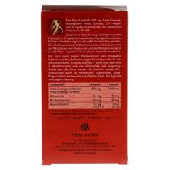 ROTER GINSENG 400 mg 8% von Terra Mundo Kapseln 120 Stück - Rückseite