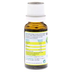 GRAPEFRUIT KERN Extrakt Bio Lösung 20 Milliliter - Rückseite