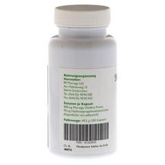 MORINGA oleifera Kapseln 100 Stück - Rückseite