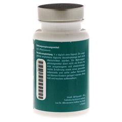 AMINOPLUS phenylalanin Kapseln 60 Stück - Rückseite