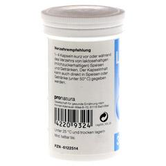 LAKTASE 3.300 FCC Enzym Kapseln 100 Stück - Rückseite