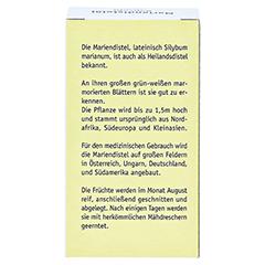 MARIENDISTEL ÖL 500 mg Kapseln 60 Stück - Rückseite