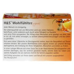 H&S Rooibos Orange Sanddorn Filterbeutel 20 Stück - Rückseite