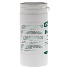 MORINGA OLEIFERA Pulver 150 Gramm - Rückseite