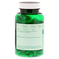 CREATIN 100% 500 mg Kapseln 120 Stück - Rückseite