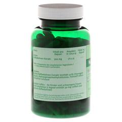 GRÜNER KAFFEE 300 mg Extrakt Kapseln 120 Stück - Rückseite