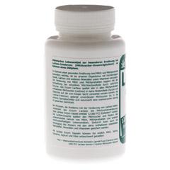 LACTASE 12.000 FCC Enzym Kapseln 120 Stück - Rückseite