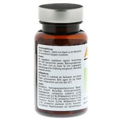 Abdigest Probiotik Kapseln 60 Stück - Rückseite