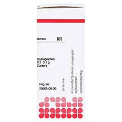 LACHESIS D 12 Globuli 10 Gramm N1 - Rechte Seite