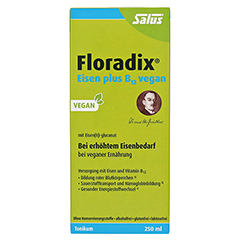 Floradix Eisen plus B12 vegan Tonikum 250 Milliliter - Vorderseite