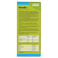 Floradix Eisen plus B12 vegan Tonikum 250 Milliliter - Rückseite