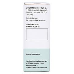 BIOCHEMIE Pflüger 8 Natrium chloratum D 6 Tabl. 100 Stück N1 - Linke Seite