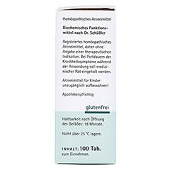 BIOCHEMIE Pflüger 9 Natrium phosphoricum D 6 Tabl. 100 Stück N1 - Rechte Seite