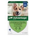 ADVANTAGE 400 Lösung Pipetten Hunde ab 25 kg 1x4 Stück