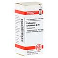 COLLINSONIA CANADENSIS C 30 Globuli 10 Gramm N1