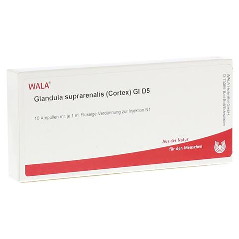 GLANDULA SUPRARENALES cortex GL D 5 Ampullen 10x1 Milliliter N1