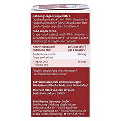 OPC NATIV Kapseln 192 mg reines OPC 60 Stück - Rechte Seite