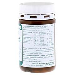 OMEGA 7 Sanddornöl 500 mg Bio Kapseln 100 Stück - Rechte Seite
