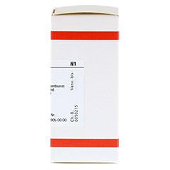 SAMBUCUS NIGRA D 3 Tabletten 80 Stück N1 - Rechte Seite