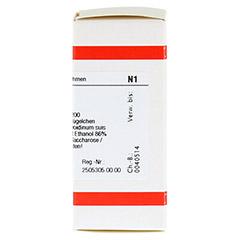 THYREOIDINUM C 200 Globuli 10 Gramm N1 - Rechte Seite