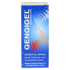 GENGIGEL Spray 20 Milliliter - Rückseite