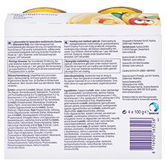 NUTRINI Creamy Fruit Sommerfrüchte 4x100 Gramm - Rückseite