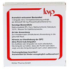 LOPHAKOMP Procain 2 ml Injektionslösung 10x2 Milliliter N1 - Rückseite