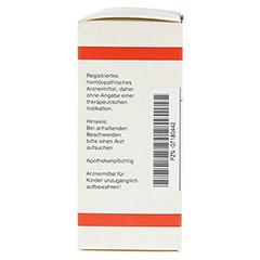 SPARTIUM SCOPARIUM D 4 Tabletten 80 Stück N1 - Linke Seite