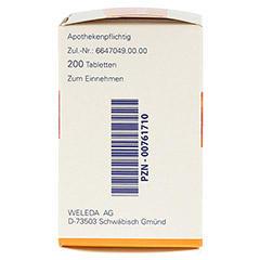 HEPATODORON Tabletten 200 Stück N2 - Linke Seite
