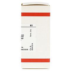 LAPIS ALBUS D 12 Tabletten 80 Stück N1 - Rechte Seite