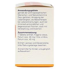 HEPATODORON Tabletten 200 Stück N2 - Rechte Seite