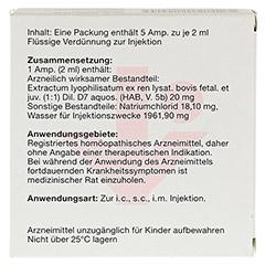 NEYDIL Nr.27 D 7 Ampullen 5x2 Milliliter N1 - Rückseite