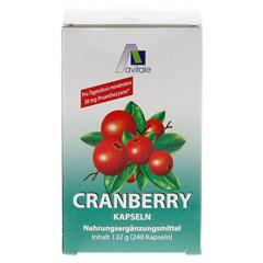 CRANBERRY KAPSELN 400 mg + gratis Cranberry Tee 240 Stück - Rückseite
