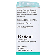 Euphrasia D3 Einzeldosis-Augentropfen 20x0.4 Milliliter N1 - Rechte Seite