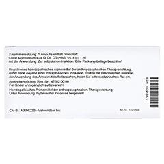 COLON SIGMOIDEUM GL D 5 Ampullen 10x1 Milliliter N1 - Rückseite