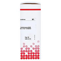 AGNUS CASTUS C 30 Dilution 20 Milliliter N1 - Rechte Seite