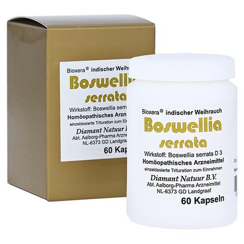 BOSWELLIA SERRATA Bioxera Kapseln 60 Stück N1
