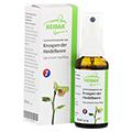 GEMMO Vaccinium myrtillus Gemmomazerat Spray 30 Milliliter