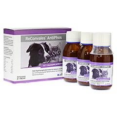 RECONVALES AntiPhos flüssig f.Hunde/Katzen 3x90 Milliliter